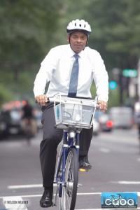 CABA_fox_on_bike2_bigger